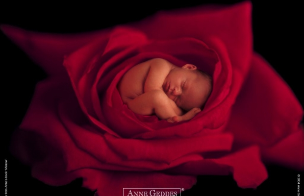 Что такое суррогатное материнство?